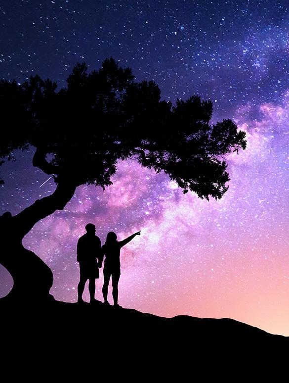 couple_tree